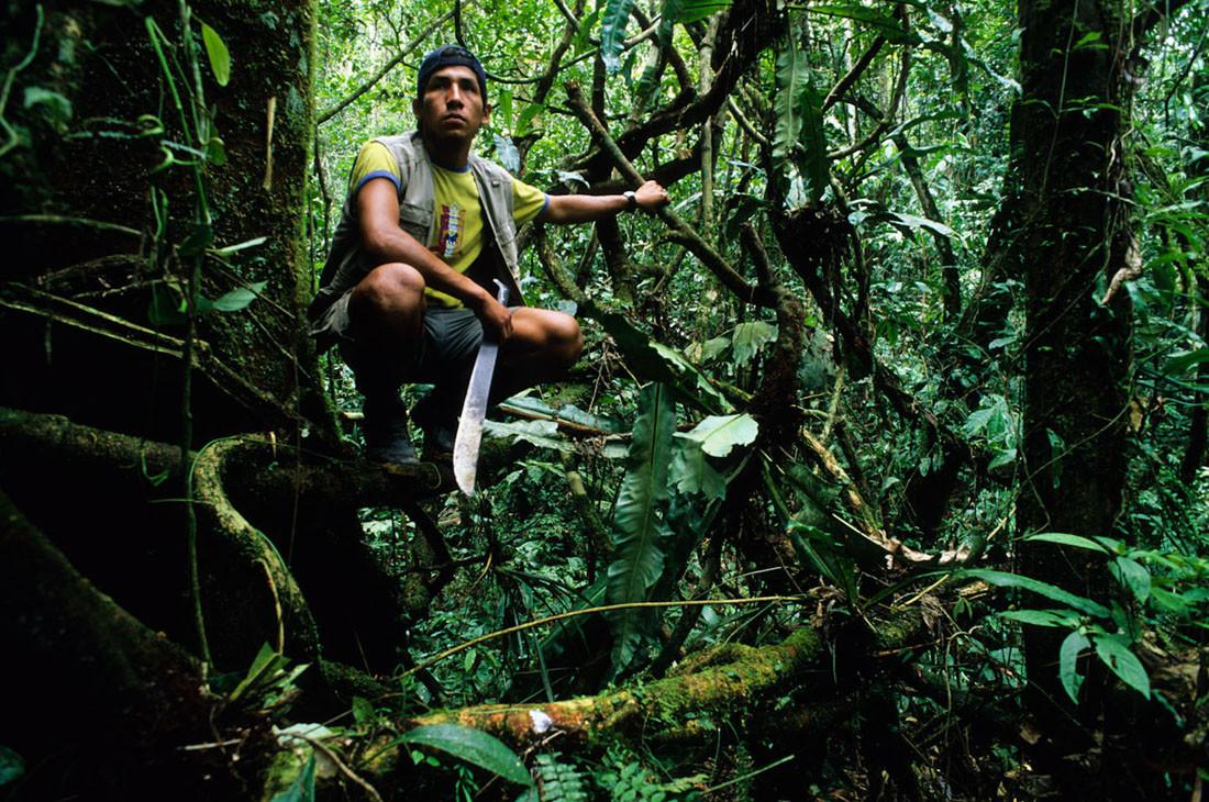 Amazonas, Parque Nacional del Manu